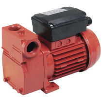 Diesel fuel pump / electric / liquid ring / transfer