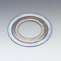 Spiral seal / ring lip / graphite / stainless steel