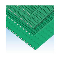 Plastic conveyor chain / modular / double-pitch / flexible