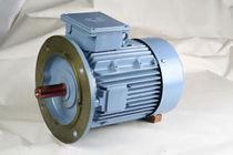 AC motor / three-phase / asynchronous / 400 V