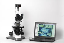 Optical microscope / computerized / laboratory