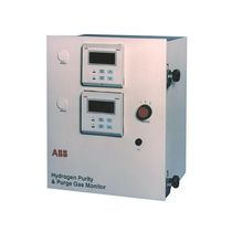Explosion proof hydrogen (H2) monitor