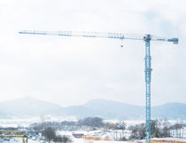 Fixed crane / topless tower / construction / lifting