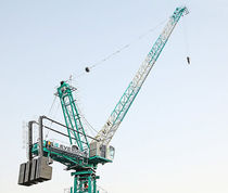 Fixed crane / luffing jib / tower / lifting