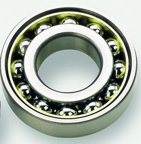 Ball bearing / single-row / deep groove / double-row