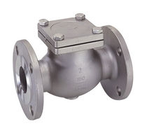 Swing check valve / flange