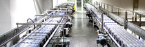 Chain conveyor / for bottle packs / transport / horizontal