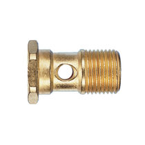 Screw-in fitting / banjo / straight / pneumatic