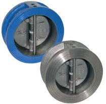 Dual plate check valve / wafer