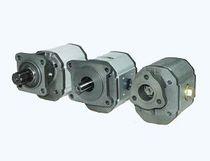 Gear hydraulic motor
