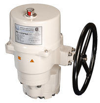 Rotary valve actuator / electric / for control of shut-off