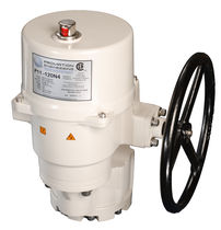 Rotary valve actuator / electric