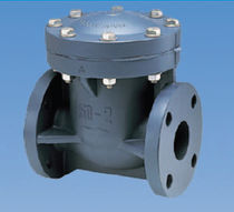 Swing check valve / plastic