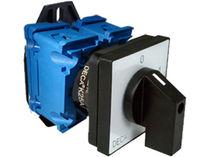 Cam switch / multipolar / handle type / electromechanical