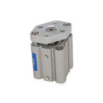 Non-rotating cylinder / pneumatic / double-acting / piston