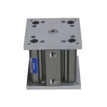 Non-rotating cylinder / pneumatic / double-acting / lift table