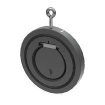 Swing check valve / horizontal / top-mounted