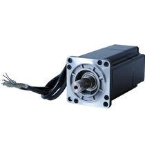 AC servomotor / brushless / 6V / compact