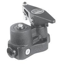 Hydraulic clamp / swing