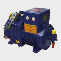Air compressor / stationary / reciprocating / flameproof