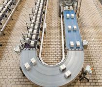 Belt conveyor / roller / for bottle packs / carton