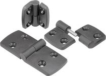 Thermoplastic hinge / stainless steel / lift-off / screw-in