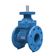 Gate valve / for potable water / flange / cast iron