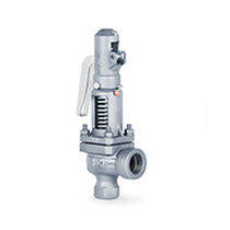 Threaded safety valve / flange