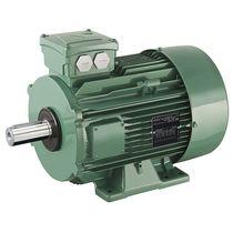 AC motor / asynchronous / 400V / 380V