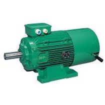 AC brake motor / asynchronous / IP55