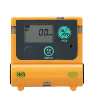 Gas detector / oxygen / hydrogen sulfide / personal