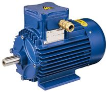 Asynchronous motor / 200 V / explosion-proof / cast iron frame