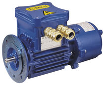Asynchronous motor / three-phase / 60 V / with brake