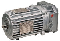 AC motor / three-phase / asynchronous / 80V