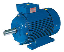 AC motor / three-phase / asynchronous / 200V