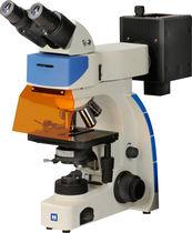 Optical microscope / inspection / digital camera / FLIM