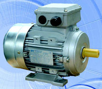 AC electric motor T 56-132 Series Siti