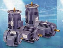 AC electric motor 0.25 - 20 HP | AE Series Adlee Powertronic Co., Ltd.