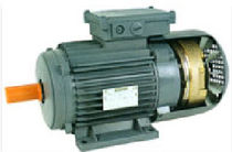 asynchronous electric motor with DC brake  Gamar
