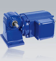 asynchronous electric worm gearmotor 50 - 250 W, 5:1 - 80:1 | SD 12/13/14 WEG Antriebe