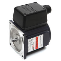 asynchronous induction motor 25 W DAEHWA E/M CO.,LTD