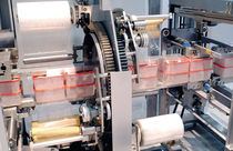 automatic orbital stretch wrapper 60 p/min | FW 200 series MEYPACK
