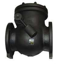 "cast iron check valve 2 - 12"", 200 psi 