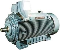 cast iron MV squirrel cage asynchronous electric motor  Schorch