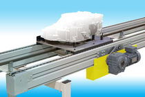 chain pallet conveyor  Dürr Paint Systems