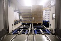 chain pallet conveyor  Ancra Systems