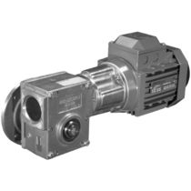 compact electric worm gearmotor i= 104:1, max. 310 Nm | BS series Radicon
