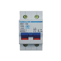 disconnect switch GSG1 -100 series TianShui 213 Electrical Apparatus CO.LTD