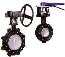 double offset butterfly valve (high performance)  Spartan Peripheral Devices
