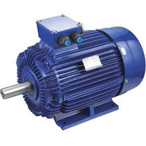 drip proof asynchronous electric motor 1/4 - 125 hp, 600 V | AYHL, AYUL Qin Wei Electric